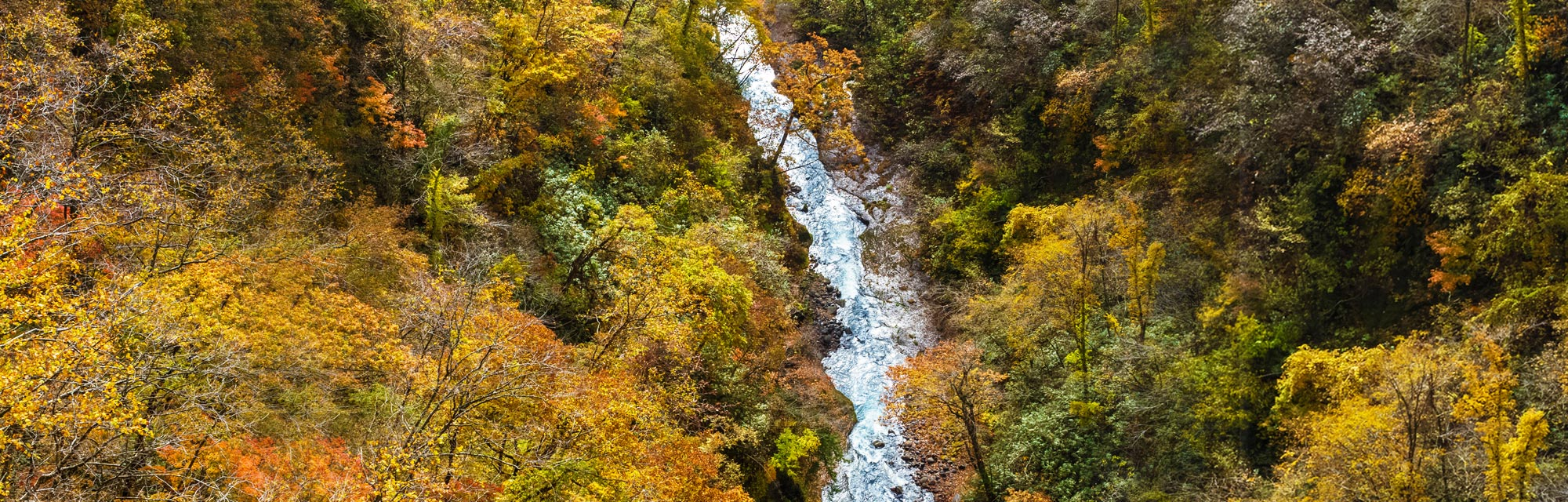 Noboribetsu Japan  city photo : Noboribetsu Primeval Forest Japan National Tourism Organization