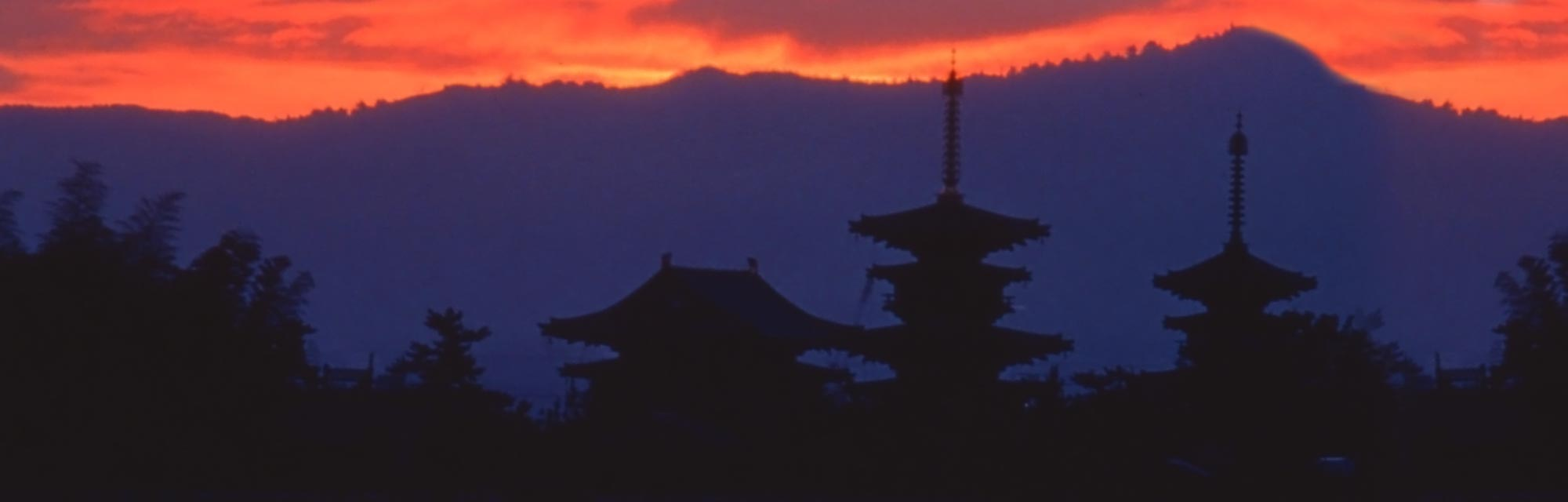 Yakushi-ji Temple - Japan National Tourism Organization